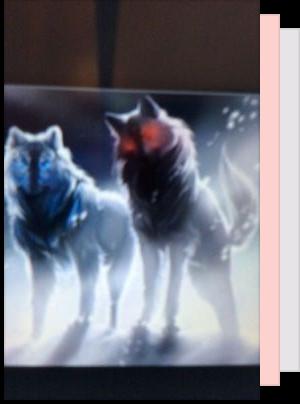 werewolf, pregnant - silverdoll20 - Wattpad