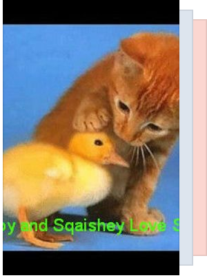 Is stampy cat dating sqaishey quack feather