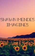 shawn mendes imagines by sunsetshawn