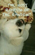 The Most Random Of The Random by CrazyArtist121