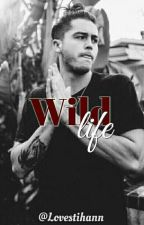 Wild Life🔹Nate Maloley by lovetihann