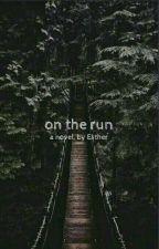 On the Run by Im_Esme