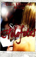 Sob os Holofotes (Por Trás da Fama #1) by CleliaKMuller
