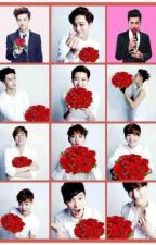 The Valentine's Day Book   EXO by SeshatSociety