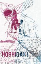 Hoshigaki by writer168