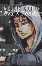Levi x reader  by marydiva17