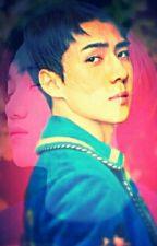 ခ်စ္ေသာ ဧည့္သည္ by sejong_love