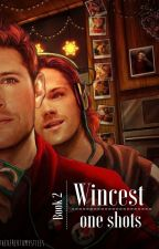 Wincest One Shots - Book 2 by BeTheDerekToMyStiles