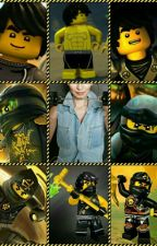 Ninjago - Cole X Reader (A Law breaker's Attachment) by YummyGhost