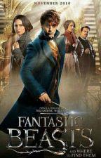 Script Les Animaux Fantastiques 2 Fanfiction  by cloclolovegood