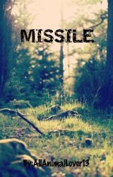 Missile by AllAnimalLover13