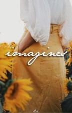 imagines and preferences • the outsiders by allursive