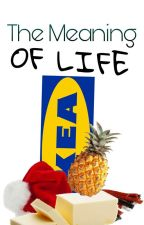 The Meaning of Life [A Nordic 5 CrackFic] by sinning_in_style
