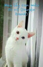 Mau lấy con mèo đó có (truyện tranh) by annileo-chan
