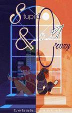 STUPID & CRAZY by SILVIAPUSPITA14