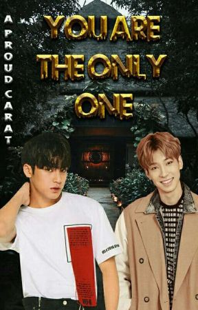 YOU'RE THE ONLY ONE 《MEANIE》[Omegaverse] by AProudCarat