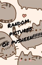 Random Pictures of Pusheen by buttercup948