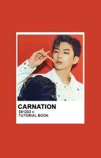 Carnation Tutorials︱tutorial book by TAESTYPOTAETO