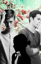 Bit of a Love Triangle (Thomas Sangster X Reader X Dylan O'Brien) by Flawlessnewt