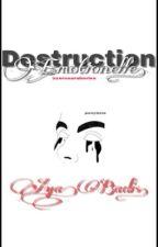 Destruction émotionnelle  by zerosaraberies