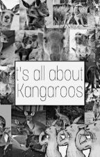 It's all about Kangaroos!  by KAngarooTY