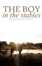 The Boy in the Stables.   Ziam AU. by BlosemGilspeld