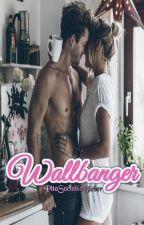 Wallbanger ➳Justin Bieber by PitoSociableBieber