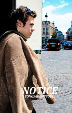Notice // styles by songsaremysoul