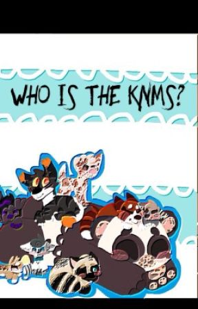 Who Is The KNMS? by TheKNMS