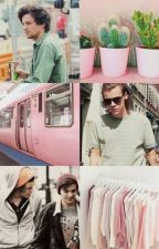 Lovers' Hearts || Larry OS by mysoftlouis