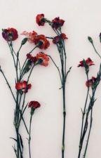 The Flower {Mb/s} by xroseweasleyx
