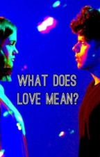 What does love mean?(A Rudy Mancuso and Maia Mitchell Fanfic) by ayessatou123