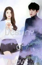 Destiny of Love by exo_gf
