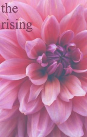 the rising  by randiesorad