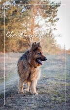 The Dog Of Love || Andreas Wellinger by xintoinsam