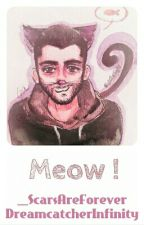 Meow ! 😽 ~ Ziam by _ScarsAreForever