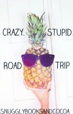 Crazy. Stupid. Road Trip. by snugglybooksandcocoa