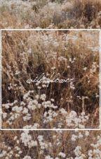 Wild Flower || Rosalie Hale  by --timeless