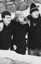 Pós-Hogwarts (Harmione) by HermioneJG8