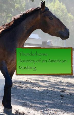 Thunderhorse: Journey of an American Mustang by LadyOfTheWild