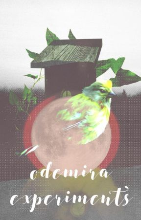 Odemira Experiments by odemira