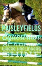 Paisley Fields Riding Academy: Where Haflingers Shine by MyArabianSky
