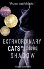 Extraordinary Cats of the glowing Shadow by Volttiger