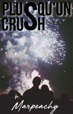 Plus qu'un crush - Shawn Mendes // [PAUSE] by Marpeachy
