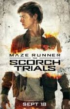 The scorch trials: Momentos Newtmas by DiSimone