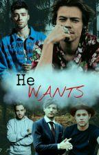 He Wants... |H.S| by judymohamed