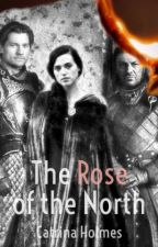 Rose of the North (A Jamie Lannister Love Story) by CatrinaHolmes