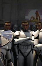 Clone Trooper GIF a Day by CT7567329
