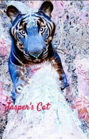 Jasper's Cat by bosshopeJB