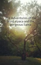 The Adventures of the blind alpaca and the gorgeous llama by emandmas